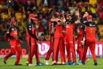 IPL 2019: RCB को लगा बड़ा झटका, स्टार खिलाड़ी चोटिल होकर हुआ टूर्नामेंट से बाहर