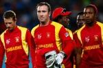 जिम्बाब्वे क्रिकेट को सरकारी संस्था ने किया बैन, जानिए क्या है वजह