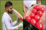 कितने दिन में तैयार होती है एक गुलाबी गेंद, कब खेला गया था इसके साथ पहला मैच, जानें