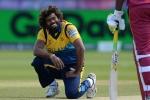 क्या T20 विश्व कप में खेलेंगे लसिथ मलिंगा, श्रीलंका क्रिकेट ने किया बड़ा ऐलान