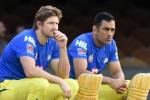 'वो एक सदाबहार क्रिकेटर है', शेन वाॅटसन ने बताया धोनी कब तक खेलेंगे क्रिकेट