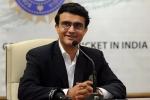 भारत में शुरू हो सकता है घरेलू क्रिकेट टूर्नामेंट, BCCI ने राज्य की टीमों से मांगी सलाह