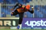 भले हार गया हैदराबाद, लेकिन इस फील्डर के अद्भुत कैच ने बटोरी सुर्खियां