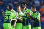 T20 World Cup : आयरलैंड ने मचाया धमाल, नीदरलैंड के 5 बल्लेबाज 'शून्य' पर हुए आउट