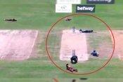 Video: मैच के बीच हुआ मधुमक्खियों का हमला, बचने के लिये मैदान पर लेटे खिलाड़ी