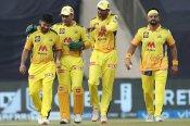 चेन्नई सुपर किंग्स की टीम चौथी बार जीतेगी खिताब, स्कॉट स्टायरिस ने बताया कारण