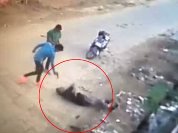 Watch Video Kabaddi Player S Murder Is On Camera In Rohtak