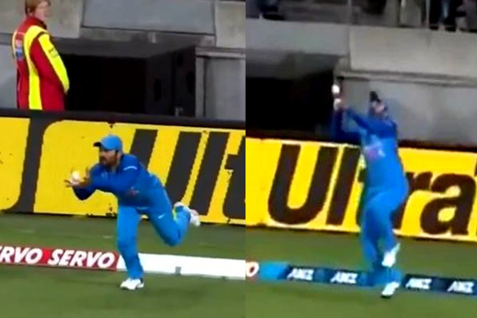 WATCH: Dinesh Karthik moments in the wellington t-20, one drop catch and another one is stunner