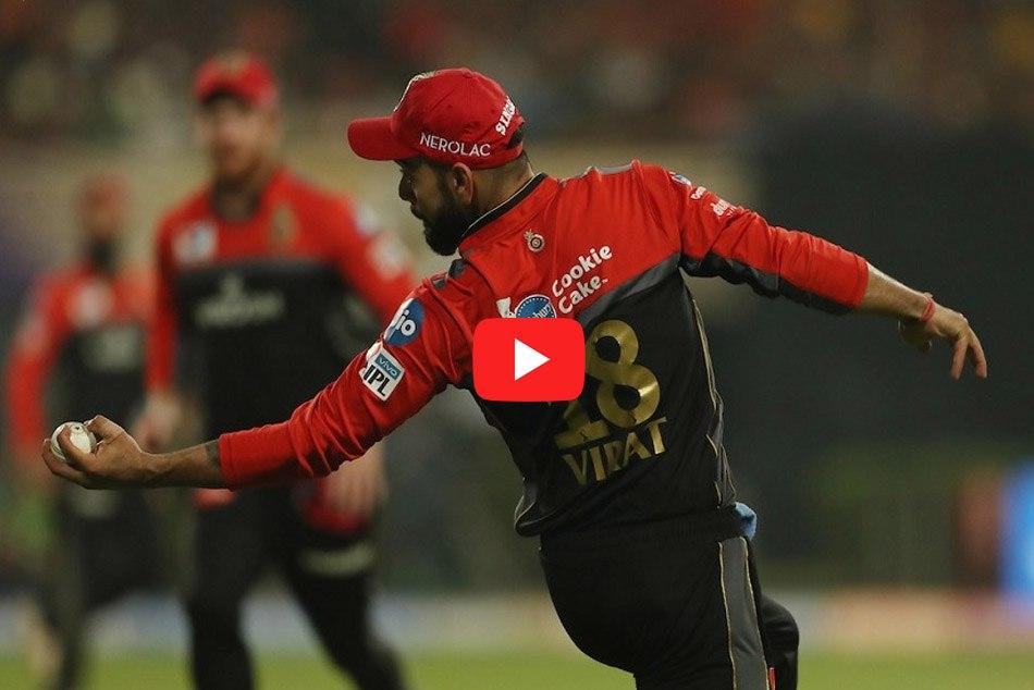IPL 2019: Virat Kohlis stunner catch surprised Subhman Gill, Watch Video