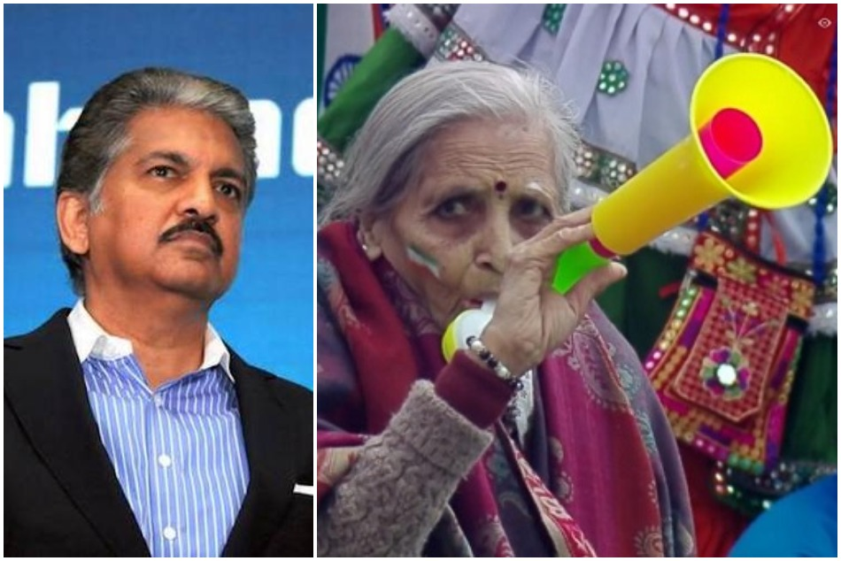 Anand Mahindra offers free match tickets to 87 year old Indian Cricket fan