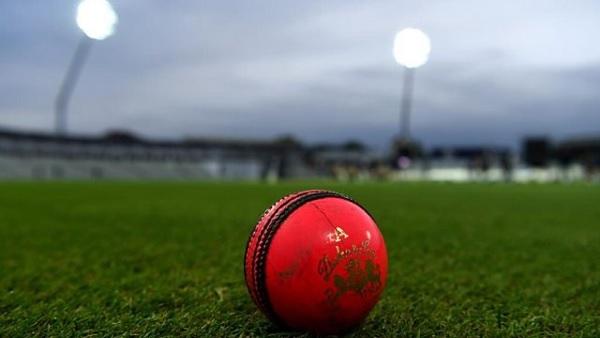 पिंक बॉल टेस्ट-