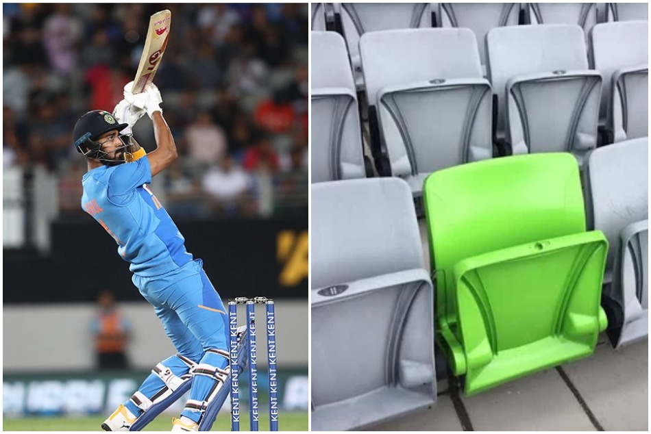 IND vs NZ: Here is the reason why is only one seat is green color in all grey seats in Eden Park