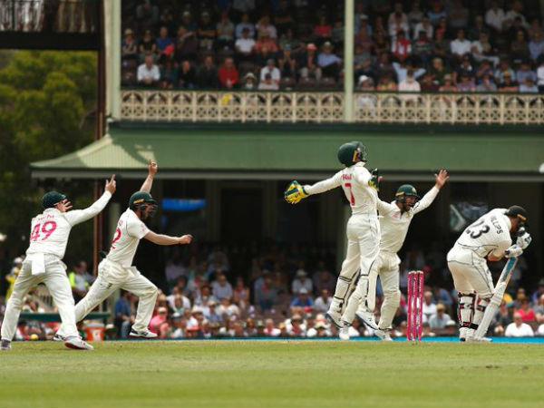 पहली पारी की तरह फेल हो गई न्यूजीलैंड की बल्लेबाजी