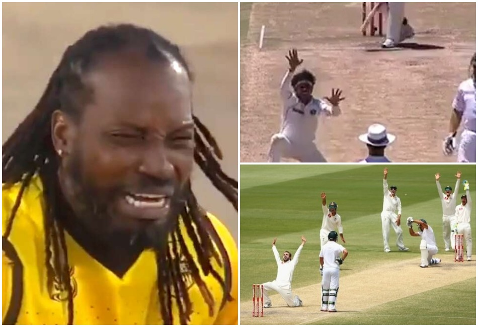 Maa Kasam Out Hai: 5 most funny appeals on the cricket field- Watch
