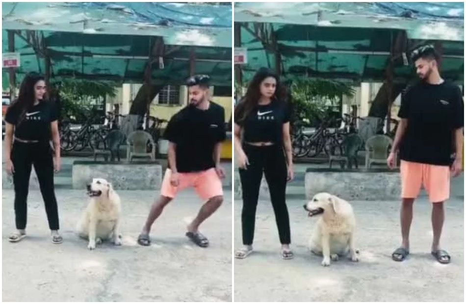 Shreyas Iyers dog runs on opposite direction while he and her sister were trying an experiment