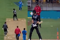Colin Munro Starts Walking Towards Pavilion After Hit Wicket By Wind Watch