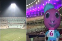 Eden Gardern Decorated With Pink Light Here Is The Historical Achievements Of This Ground