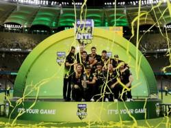 rd T20i Australia Vs Pakistan Sean Abbott David Warner Aaron Finch Clean Sweep Over Pakistan