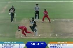 Watch Viral Video When Zimbabwe U 19 Wicketkeeper Dane Schadendorf Break Stumps Like Ms Dhoni