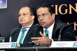 Sri Lanka Cricket Board Gave Large Amount To Government To Fight Corona Virus