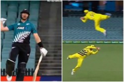 Aus Vs Nz 1st Odi Steve Smith Caught Tremendous Catch While Flying In The Air