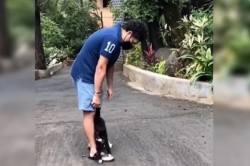 Sachin Tendulkar Shared Video Saiid My New Friend Is Back