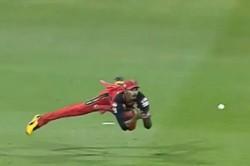 Mi Vs Rcb Devdutt Padikkal Showed Agile Catches Tremendous Catche