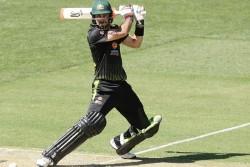 New Zealand Vs Australia 3rd T20i Glenn Maxwell Break Seat By Hitting Six Slams 70 Runs In 31 Balls