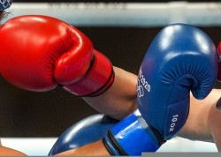 India S Junior Boxing Team Was Returned From Delhi Airport Bfi Was Negligent