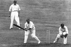 Birthday Special Bradman Was Like A Don In The Field Scored A Century In 3 Overs
