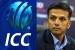 राहुल द्रविड़ को लेकर आईसीसी ने की बड़ी गलती, हो गए ट्रोल